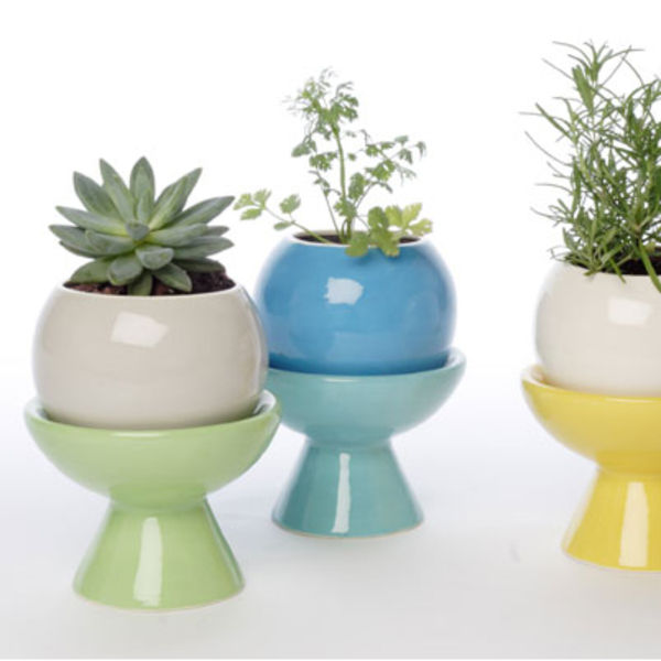 perch designs campy planter