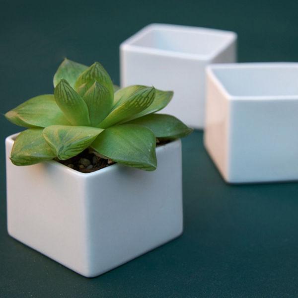 White cube box planters by Flora Grubb