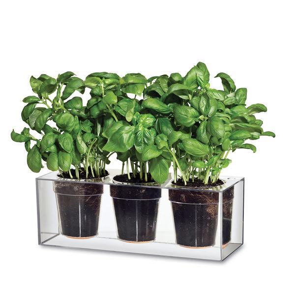 boskke cube 3 small patrick morris planter