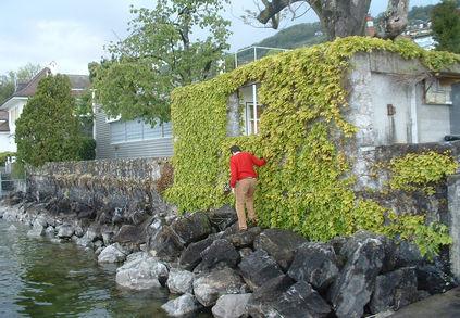 switzerland villa le lac wall