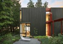 steel facade home Seattle