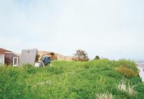 bernal heights garden home