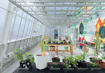 the steel and glass greenhouse of a Brooklyn school's learning garden