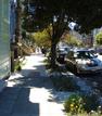 348 Scott Street (Lower Haight District)