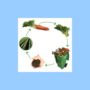 compost cycle  500