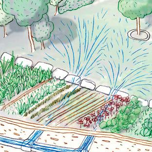 rainwater illustration