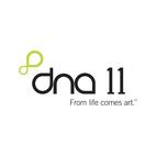 DNA 11