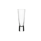 Aarne Champagne Glass