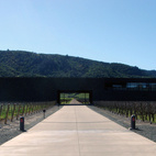 The Stealth Winery