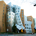 """I Live in a Frank Gehry"""