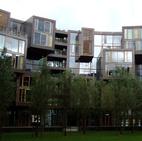 New School Architecture
