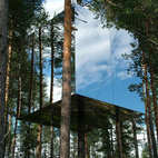 Swedish Treehouse Fantasy