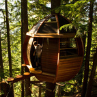 7 Tremendous Tree Houses