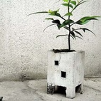 Concrete Planter by Pull + Push