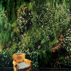 7 Great Green Walls