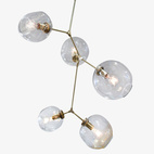 5 Globe Branching Bubble Chandelie