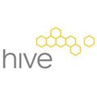 Hive Modern