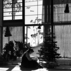 Ray Eames 101