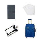 Gifts from the Dwell Store: For the Jet Setter