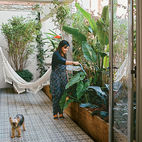 Going Green: 11 Ways to Design with Plants