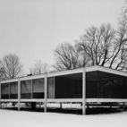 We Love You, Mies van der Rohe