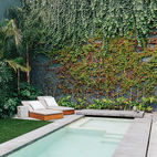 A Lush Retreat With a Sheltered Rooftop Pool in Mexico City