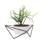 Modern Made in the USA America products like the tabletop planter by KKDW from Texas