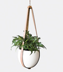 modern made in america products USA northeast might plus ladder ceiling planter