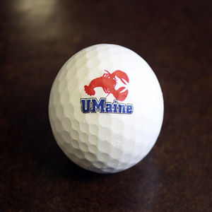 David Neivandt, a professor of biological and chemical engineering, has developed a biodegradable golf ball made with lobster shells. Unlike other biodegradable golf balls, this one can be used with both drivers and irons. Photo courtesy of UMaine.