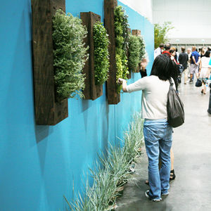 dod2010 outdoor plant wall portrait