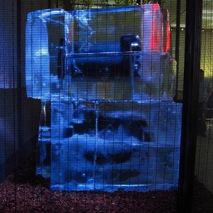 milan 2011 cassina ice corbu