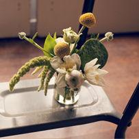 Lilify Still Life designed by Hanni Liliedahl
