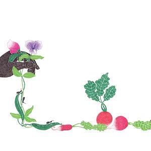 Gardening illustration by Malin Rosenqvist