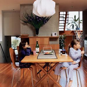 bornstein residence kitchen portrait