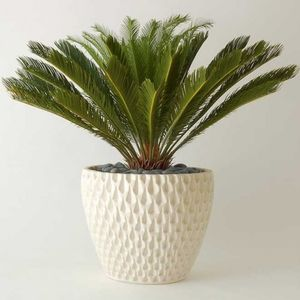 Architectural Pottery AP-100 Pineapple Planter