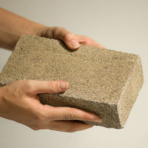 bioMASON brick; brick