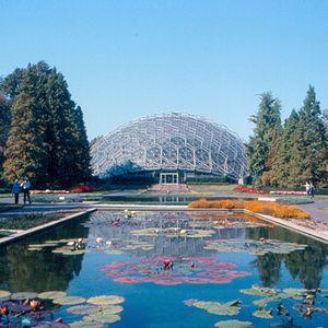 Buckminster Fuller Design Icon