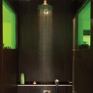 front and back apartment interior shower with green windows