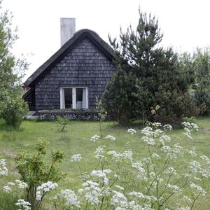 A cottage in Denmark with a traditional thatched roof